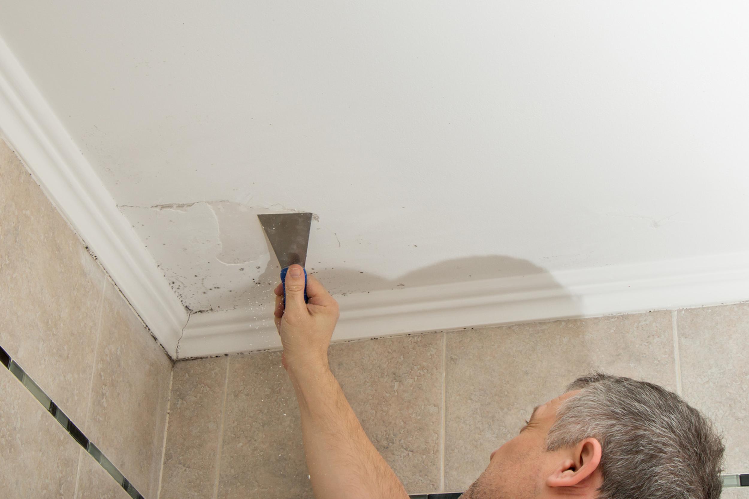 Damp Repairs and Removal